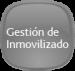 gest_inmovilizado
